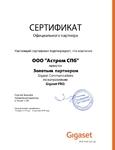 Сертификат Gigaset золотой партнер